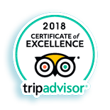 Best Excursions Alhambra for Tripadvisor